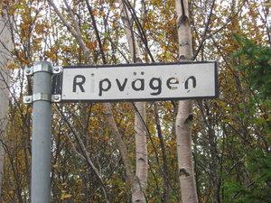 Ripjakt och Ljusdal sept. 2010 040.jpg