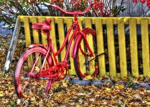 Röd cykle.jpg