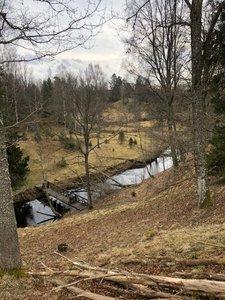 Naturreservatet Lekeberga-Sälven