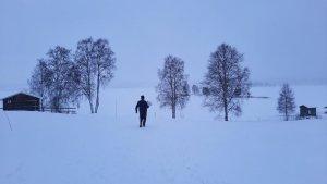Vintervitt med blå toner