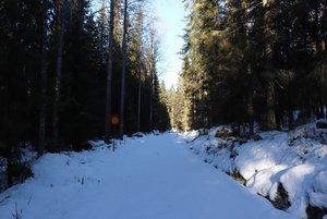 Fricamping under vintern