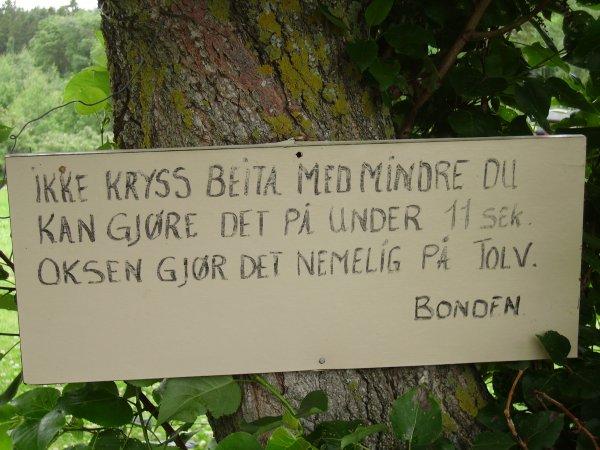Norge 001.jpg